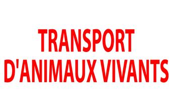 Plaque Transport Animaux Vivants